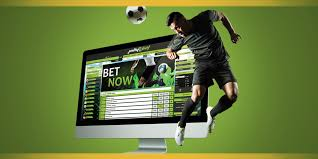 How to Bet on an Online Sports Book